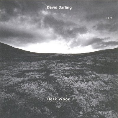 David Darling - Dark Wood (1995) MP3 от BestSound ExKinoRay