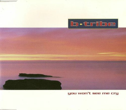B-Tribe - You Won't See Me Cry [Germany CDSingle] (1993) MP3