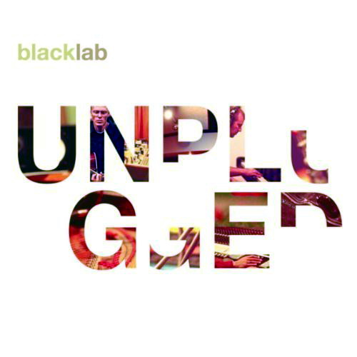 Black Lab - Unplugged (2011) MP3 от BestSound ExKinoRay
