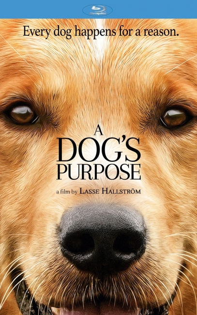 Собачья жизнь / A Dog's Purpose (2017) BDRip-AVC от OlLanDGroup | iTunes