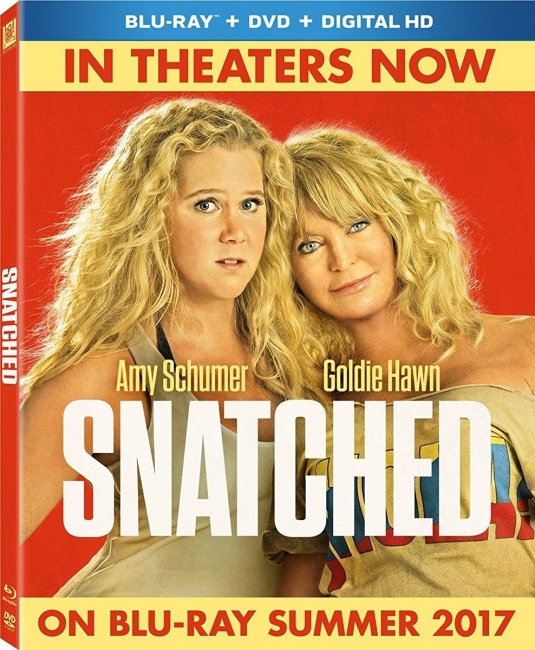 Дочь и мать её / Snatched (2017) BDRip-AVC от OlLanDGroup | Лицензия