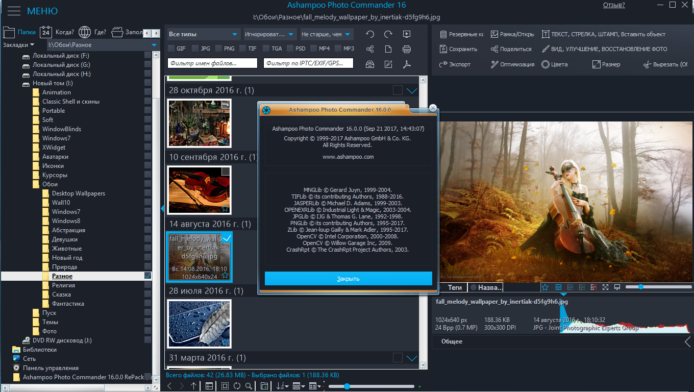 Ashampoo Photo Commander 16.1.1 (2019) PC | RePack & Portable by elchupacabra
