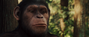 ��������� ������� ������� / Rise of the Planet of the Apes (2011) BDRip 1080p | DUB | MVO
