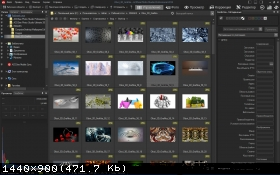 ACDSee Photo Studio Professional 2018 11.0.785 (2017) PC | RePack by KpoJIuK