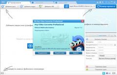 Any Video Converter Professional 7.0.7 (2020) PC